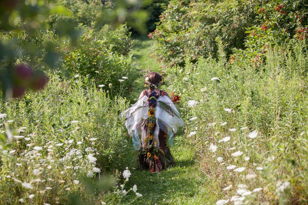 pollinator and native perennial dress