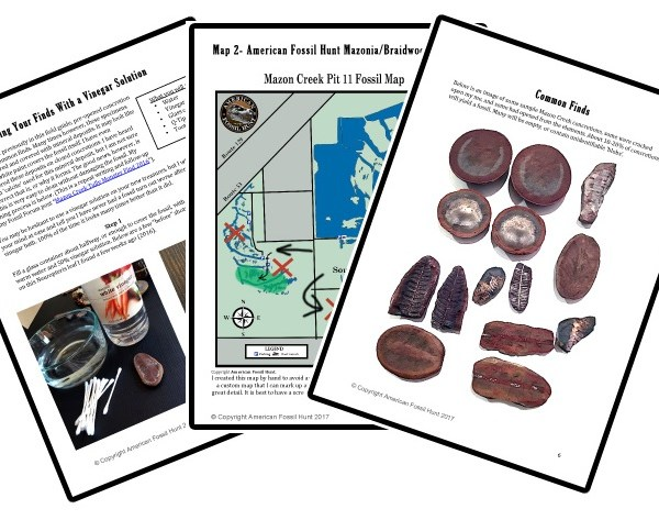 Fossil collecting field guide