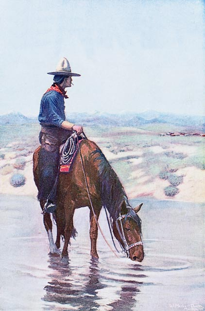 Cowboy On Horse Drinking