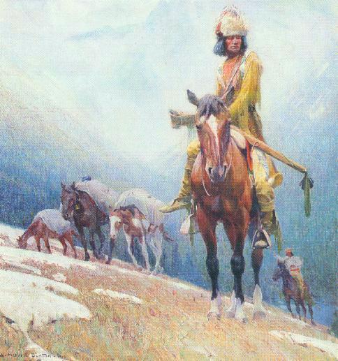 The Breed Trapper