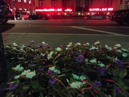 3rd Avenue Flowers & Neon