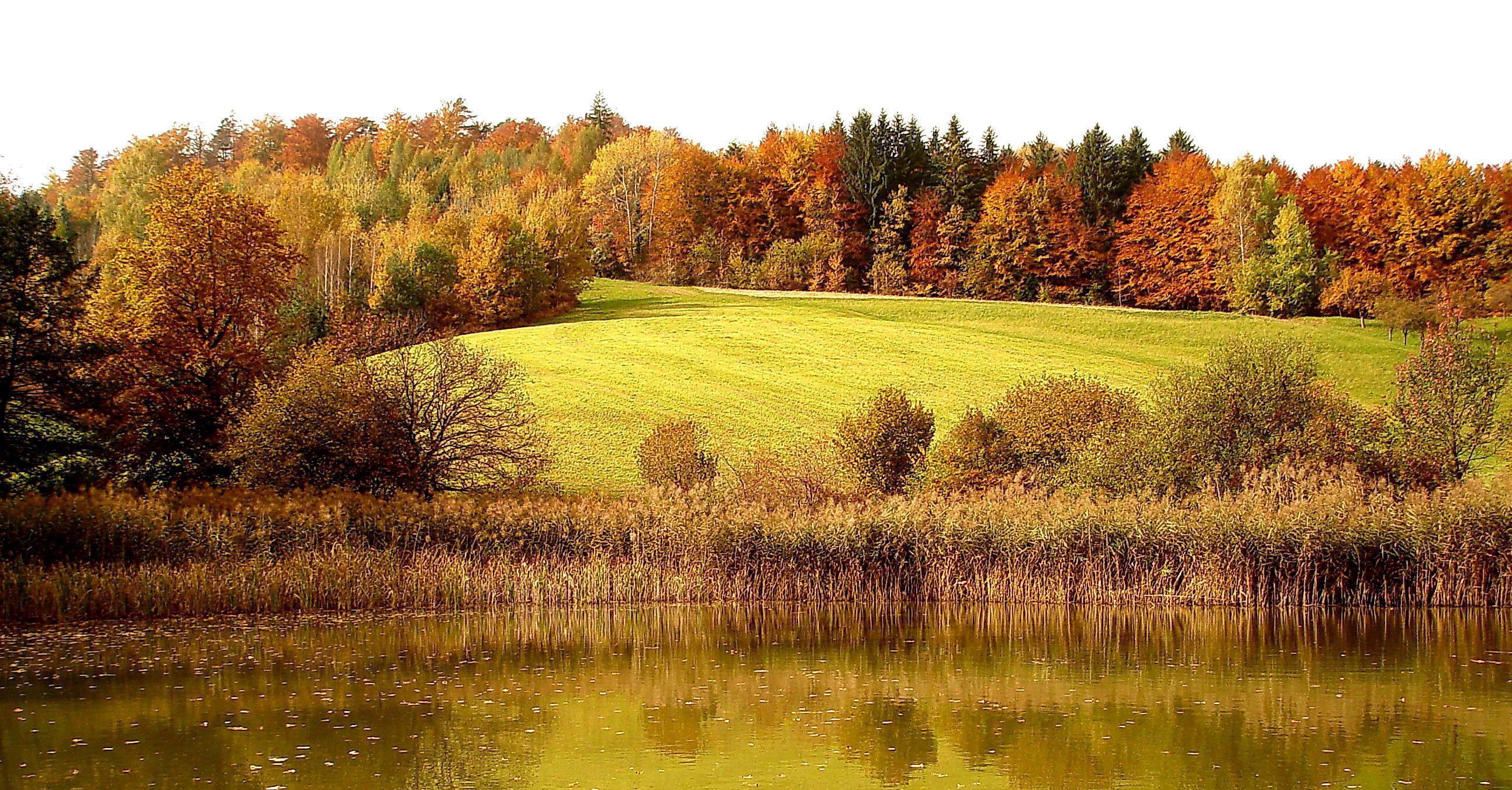 Fall Hunting season American Habitat Brokerage