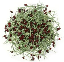 Botanical Blends - Timothy Hay With Cranberries