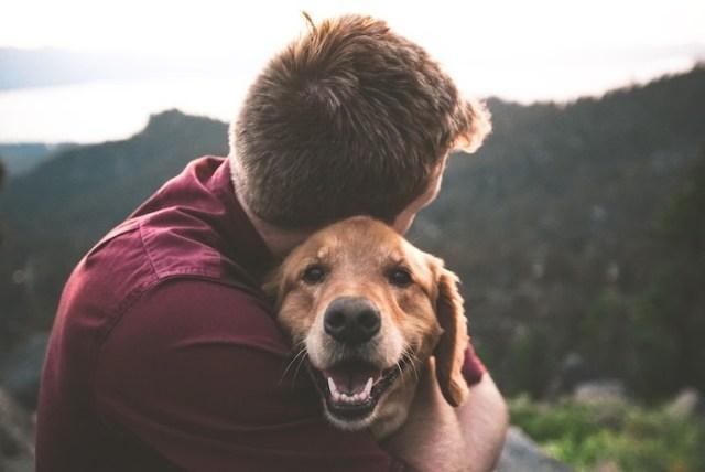 7 beneficios de tener una mascota en casa que no conocías