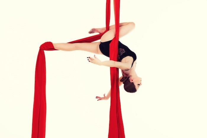 La danza aérea resulta de la transformación de diferentes disciplinas artísticas y deportivas, que combinan la danza contemporánea y las artes circenses