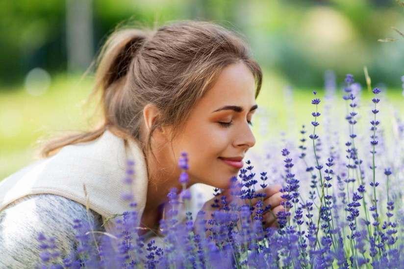 6 Hierbas con propiedades medicinales para combatir depresión y ansiedad