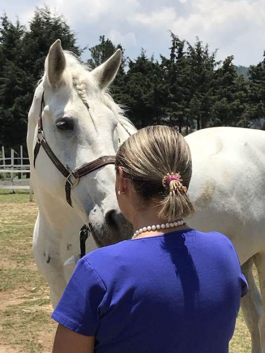El coaching asistido por caballos está dirigido a personas de cualquier edad