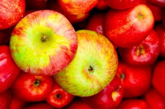 La manzana Honeycrisp ayuda a fortalecer el sistema inmunológico