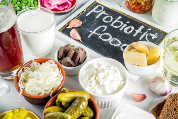 Probióticos: consúmelos diariamente y refuerza tu sistema inmunológico