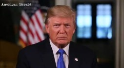 President Trump's Weekly Address…This Week on The Constitution