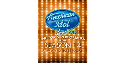 American Idol Tour 2015 Poster