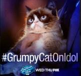Grumpy Cat Hashtag American Idol