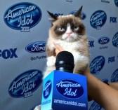 Grumpy Cat Says You Shall Not Pass