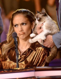 Jennifer Lopez and Grumpy Cat on American Idol