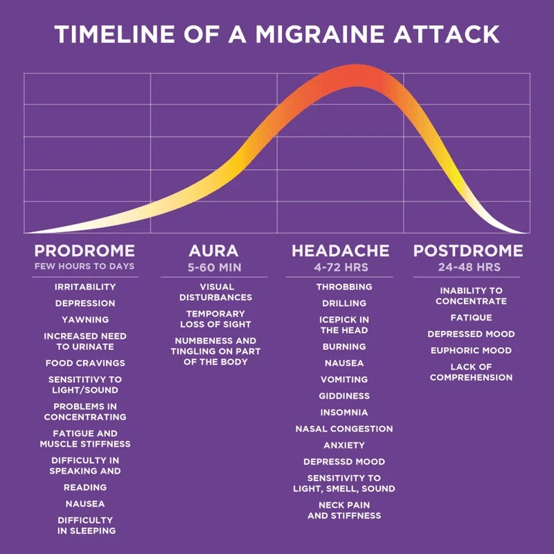 Timeline of migraine attack
