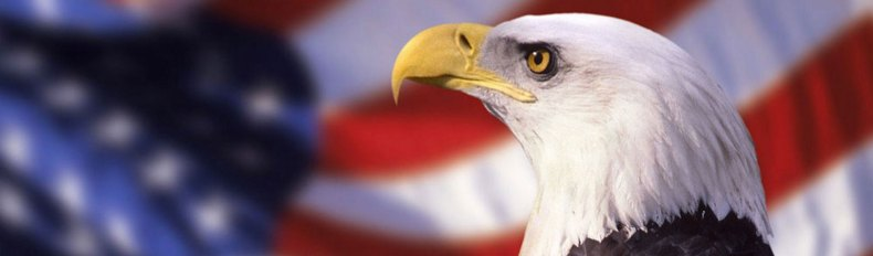 AST-Image-of-Eagle-and-Flag-resized-2