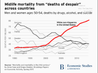 This rise in mortality, documented by Brookings scholars in 2017, highlights the severity of the healthcare crisis.