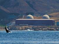 The endangered Diablo nuclear plant in California.