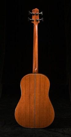 SCGC True Acoustic Bass 7