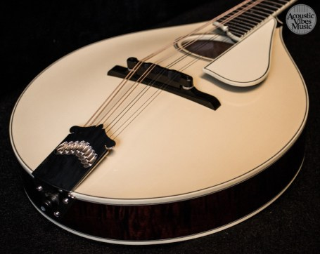 collings-mt2-o-by-kathryn-butler-10