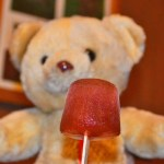 American Vegan Society Popsicle