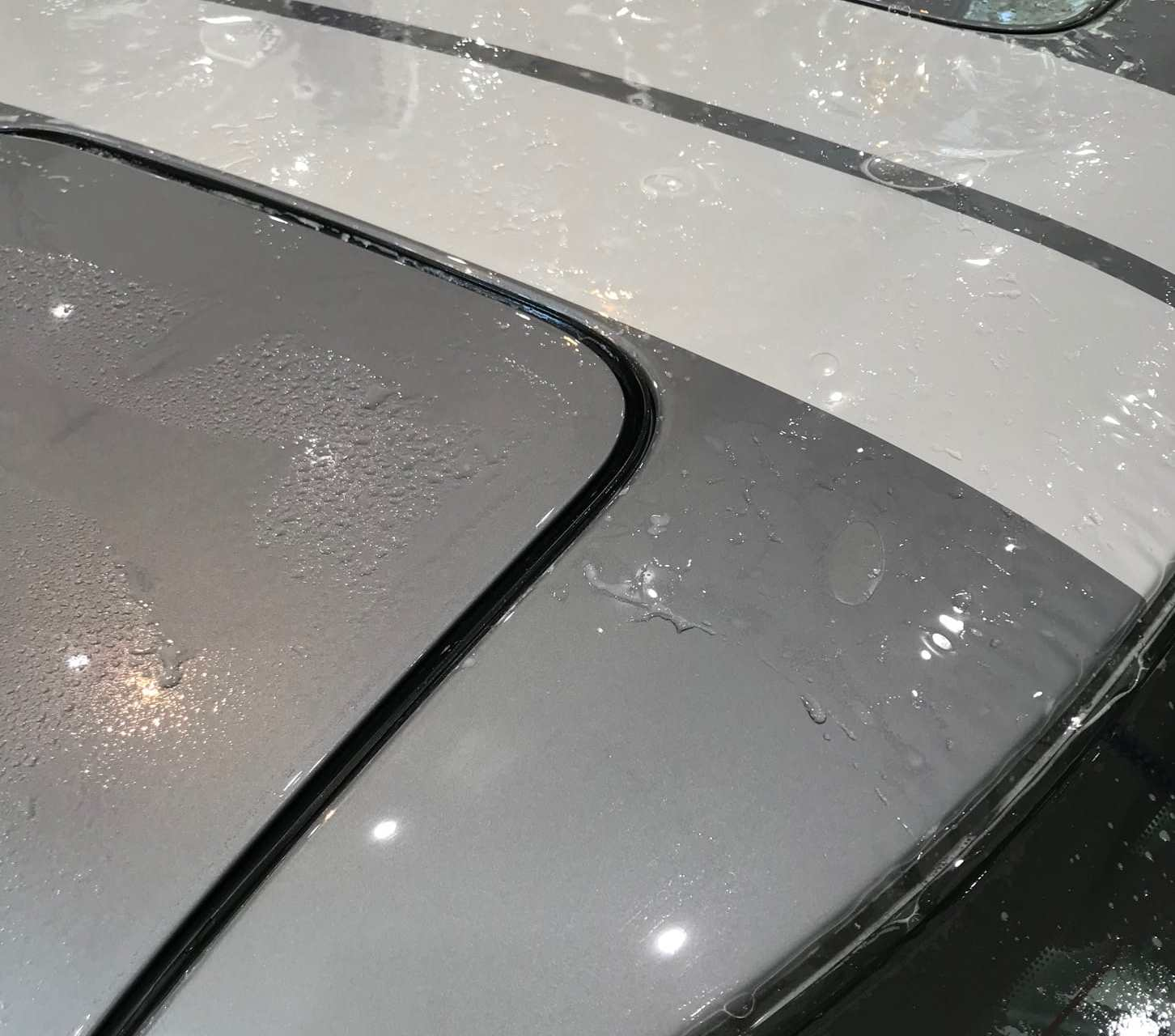 Grey Porsche XPEL Paint Protection installation