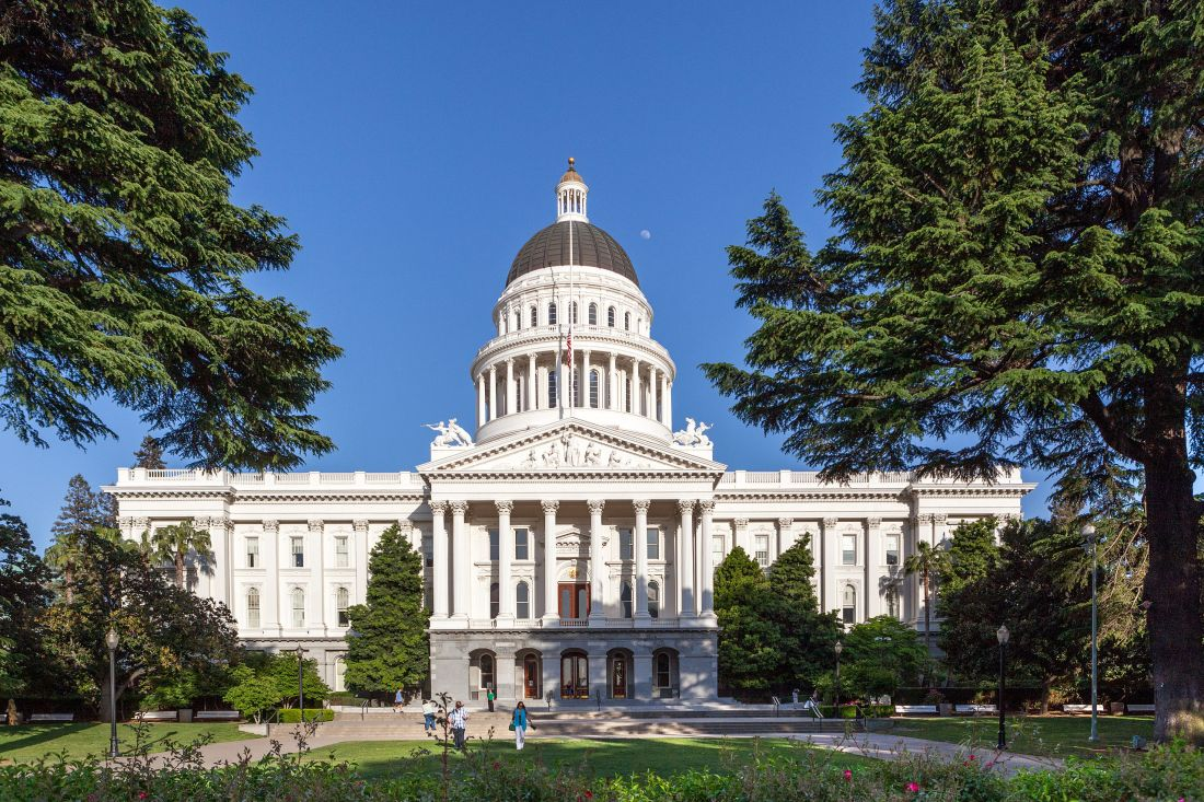 blue state legislature