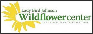 lady-bird-wildflower-center