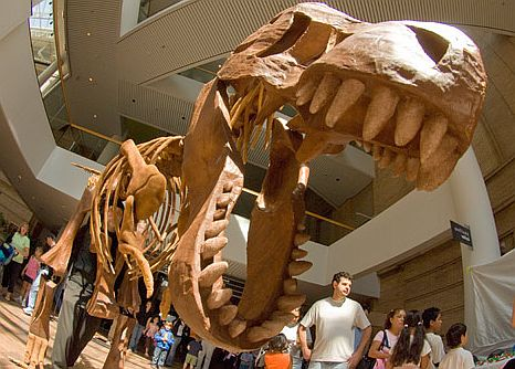 denver-science-museum
