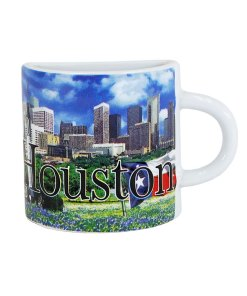 Houston Mug Magnet