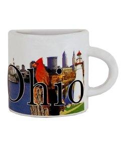 Ohio Mug Magnet