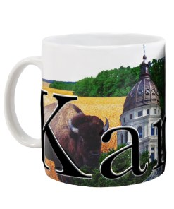 Kansas Color Relief Mug