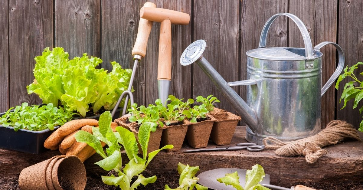 Types of Gardening Tools You Should Have