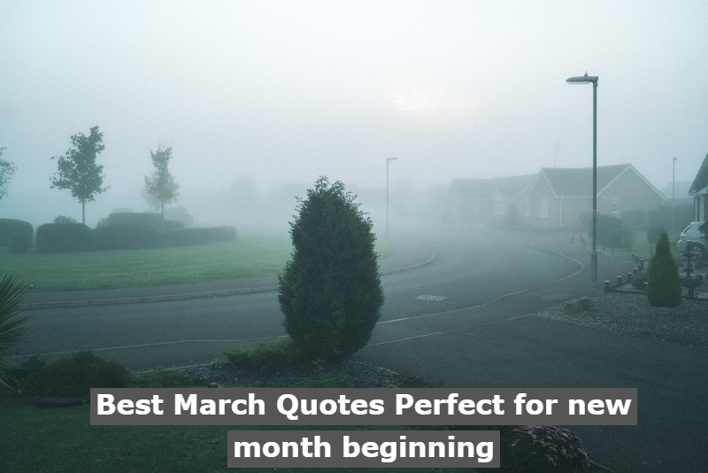Best March Quotes Perfect for new month beginning