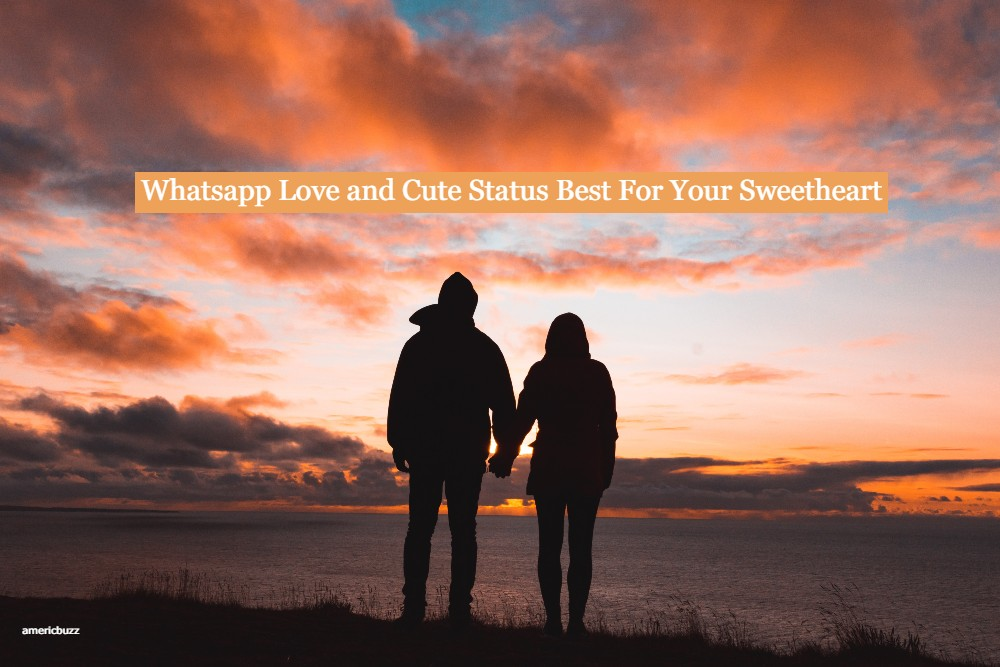 210+ Whatsapp Love and Cute Status Best For Your Sweetheart
