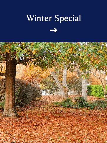Winter Special | Americus Garden Inn BB, near Andersonville Historic Site