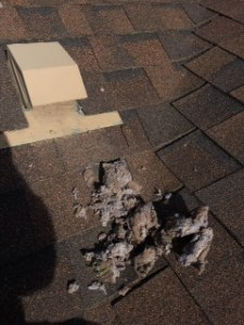 dryer vent cleaning roof