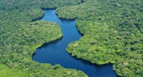 """""""Amazonien wird weiterhin der Tempel der größten Biodiversität sein"""""""