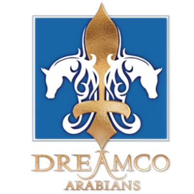 Dreamco