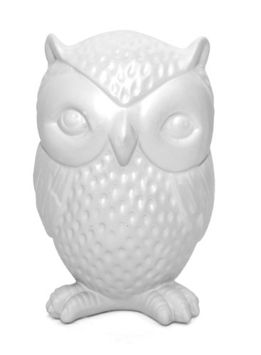 cool adult piggy bank owl