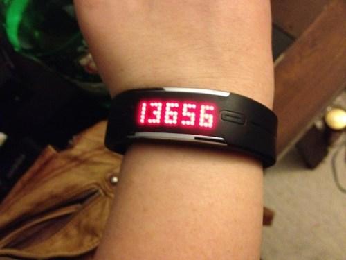 13656 steps with polar loop
