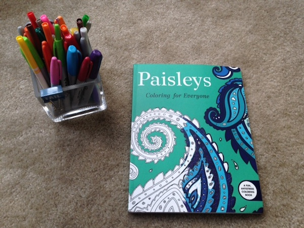markers and paisley adult coloring book