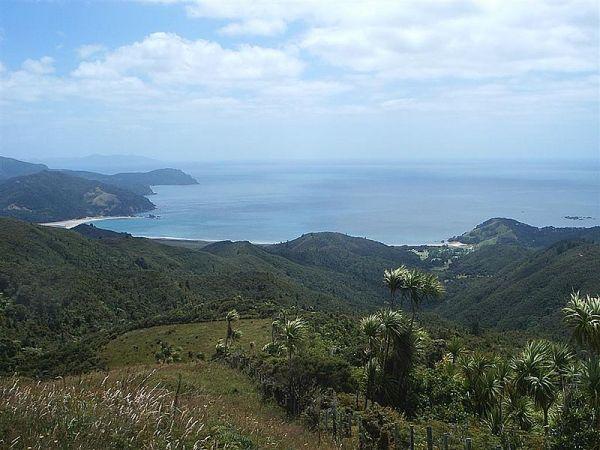 Waikawau Bay on Coromandel Peninsula