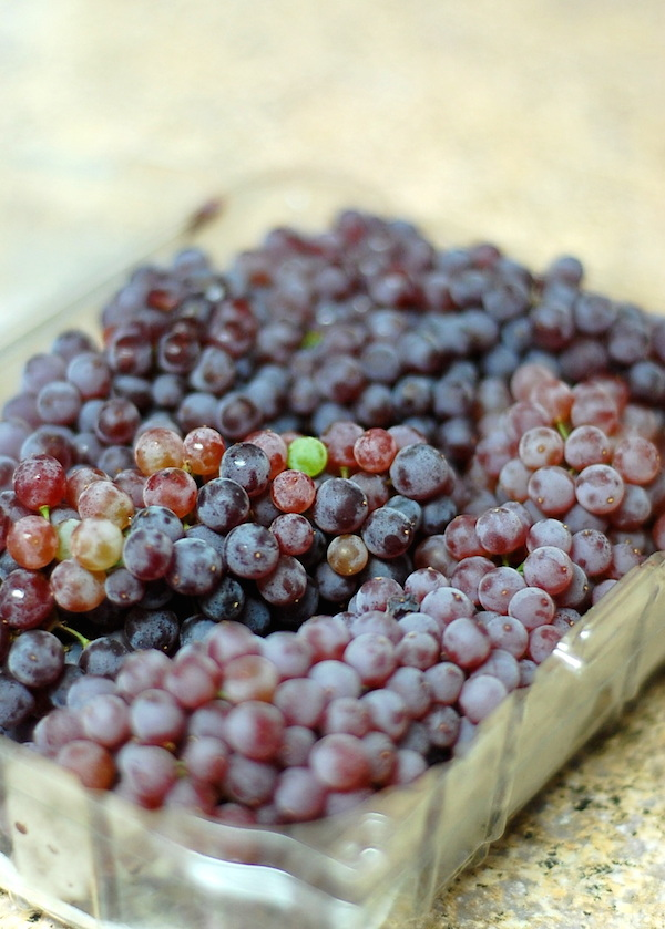 champagne grapes green and red