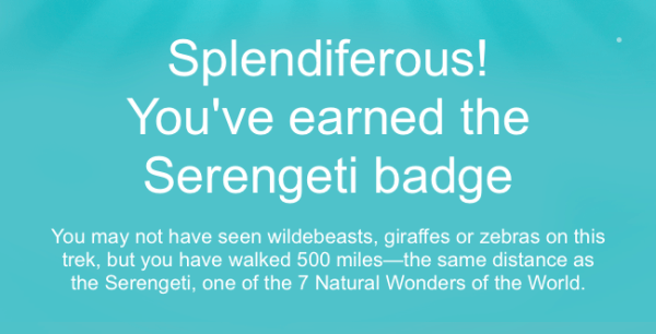 new fitbit badge - serengeti badge