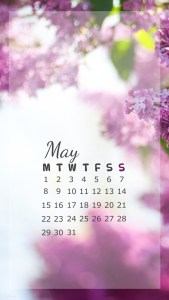 iPhone Calendar May 2017