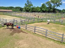Photo of corrals at Amethyst Farm