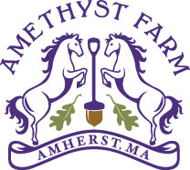 Logo of Amethyst Farm