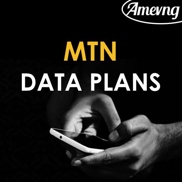 Amevng Mtn data plan 2