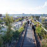 Хай-Лайн жемчужина или убожество. The High Line — надземный парк в Манхэттене.